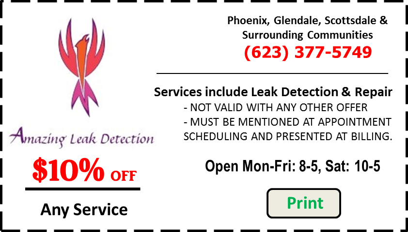 Leak Detection Services Coupon